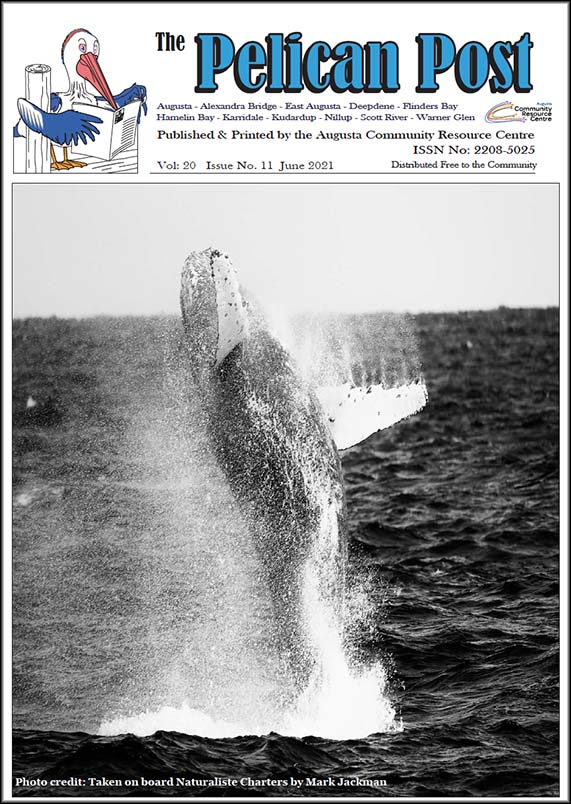 Click here to download the June 2021 issue of the Pelican Post.